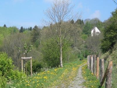 Wanderpfad Kronenburg Eifel - Burghaus & Villa Kronenburg
